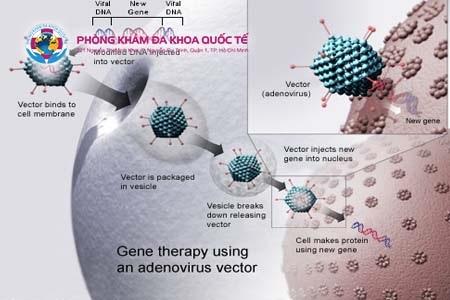 Điều trị sùi mào gà bằng liệu pháp DNA